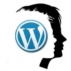 Tipos de usuarios y permisos en los perfiles de WordPress