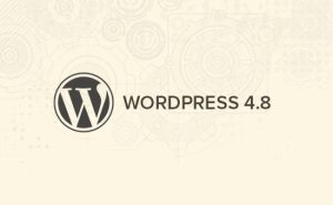 ¡Ya está disponible para actualizar WordPress 4.8!